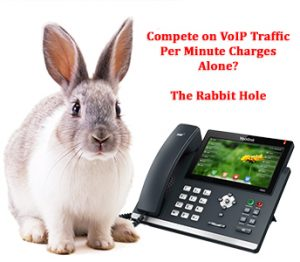 Competing with VoIP Minute Charges